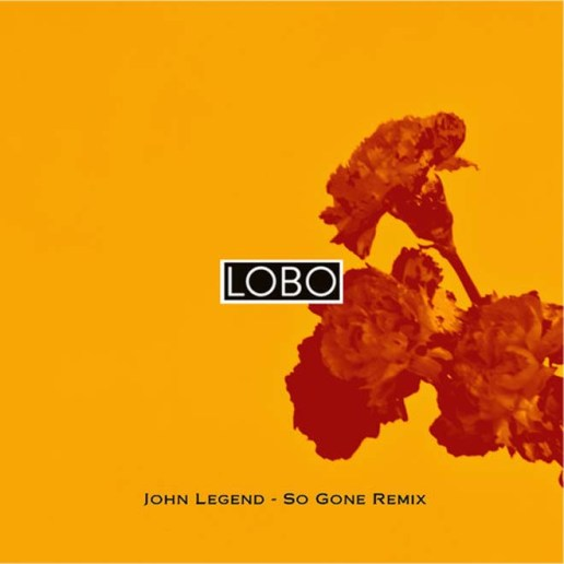 John Legend - So Gone (Lobo Remix)