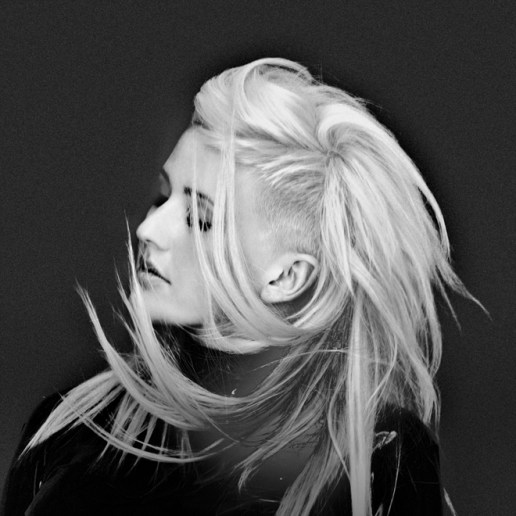 Ellie Goulding - How Long Will I Love You (EMBRZ Remix)
