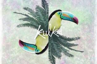 Kulkid - Have I Ever Told U