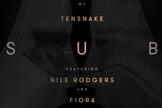 Tensnake featuring Nile Rodgers & Fiora - Love Sublime