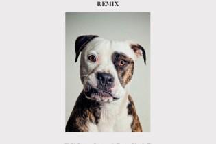 Kyla La Grange - Cut Your Teeth (Kygo Remix)