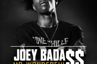 Joey Bada$$ - Mr. Wonderful