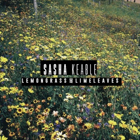 Sasha Keable - Lemongrass & Limeleaves (EP)