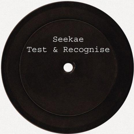 Seekae - Test & Recognise (HWLS Remix)