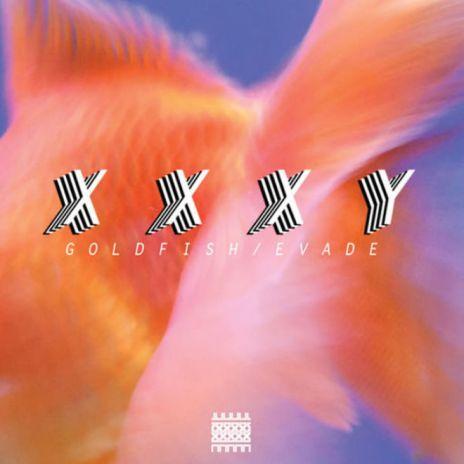 xxxy - Goldfish