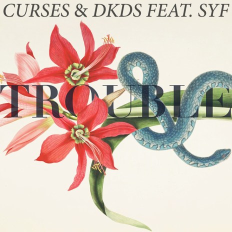Curses & DKDS featuring SYF - Trouble