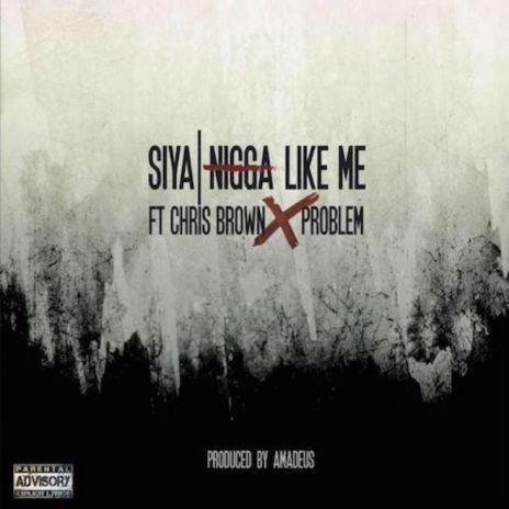 Siya featuring Chris Brown, Problem - N*gga Like Me