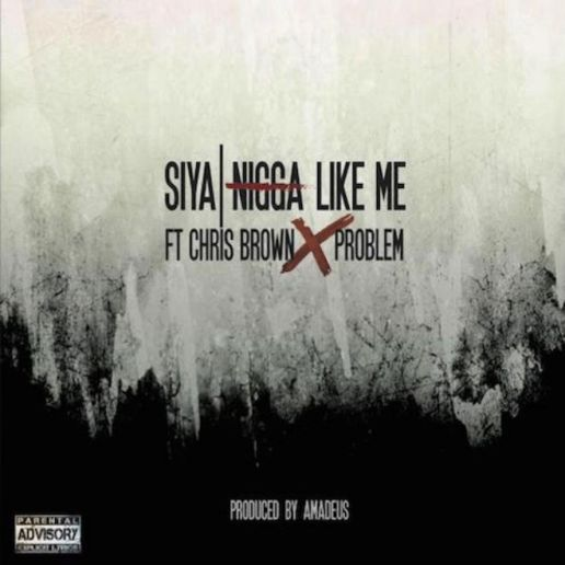 Siya featuring Chris Brown, Problem - N*gga Like Me