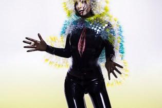 Björk - Vulnicura (Album)