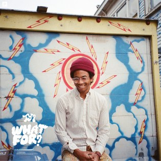 Stream Toro y Moi's New Album 'What For?'