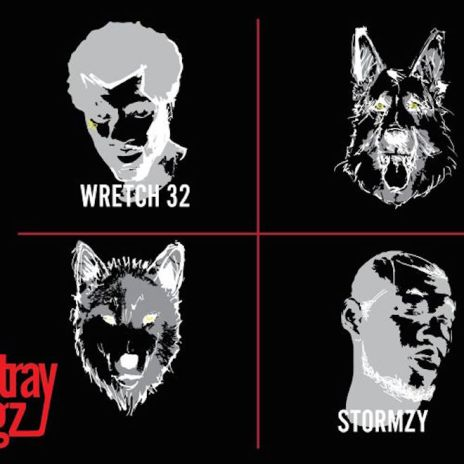 The Stray Doggz featuring Stormzy & Wretch 32 - Skank Out