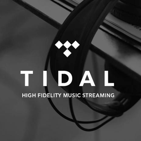TIDAL CEO Steps Down