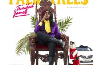 Trinidad James - Palm Trees