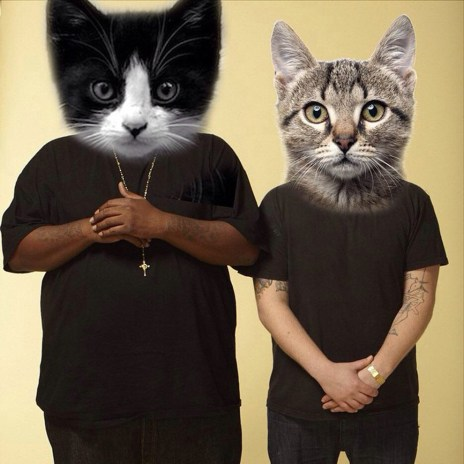 """Preview """"Angelmeowster"""" From Run the Jewels' Cat-Remix Album"""