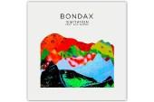 Bondax featuring Erik Hassle - Temptation