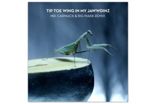 RiFF RAFF – TiP TOE WiNG IN MY JAWWDiNZ (Mr. Carmack Remix)