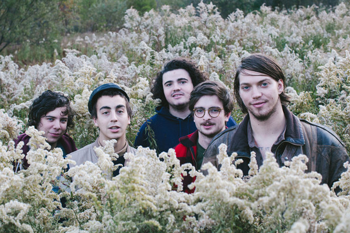 """Twin Peaks Shares New Single, """"Holding Roses"""""""