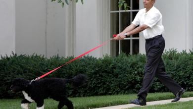 Barack Obama and Michelle Obama mourns the death of pet Dog Bo