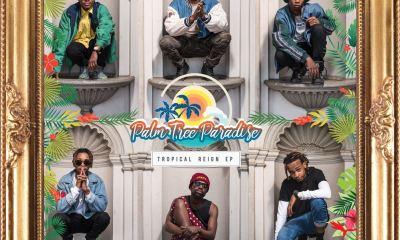 PalmTree Paradise release Tropical Reign Mixtape! palm