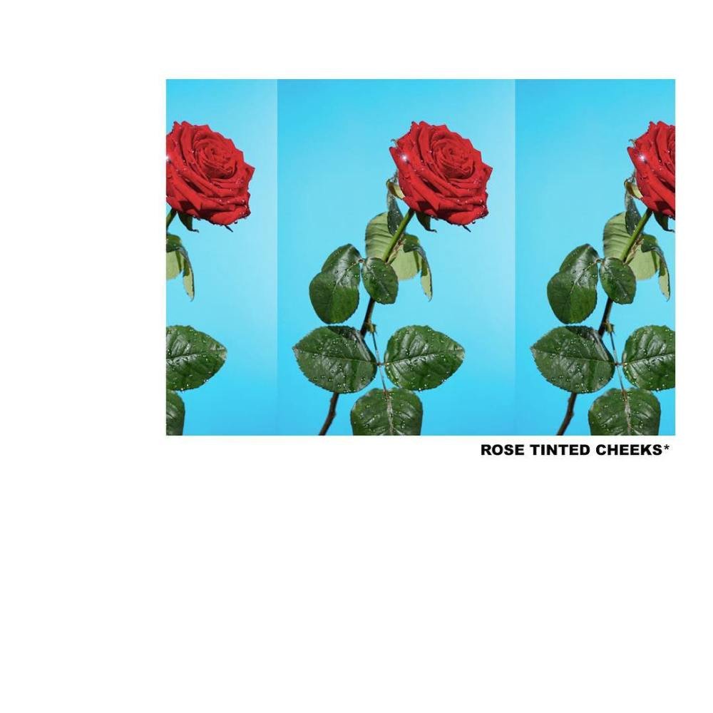 Listen To Tyler, The Creator's New 'Rose Tinted Cheeks' Song Tyler The Creator Rose Tinted Cheeks