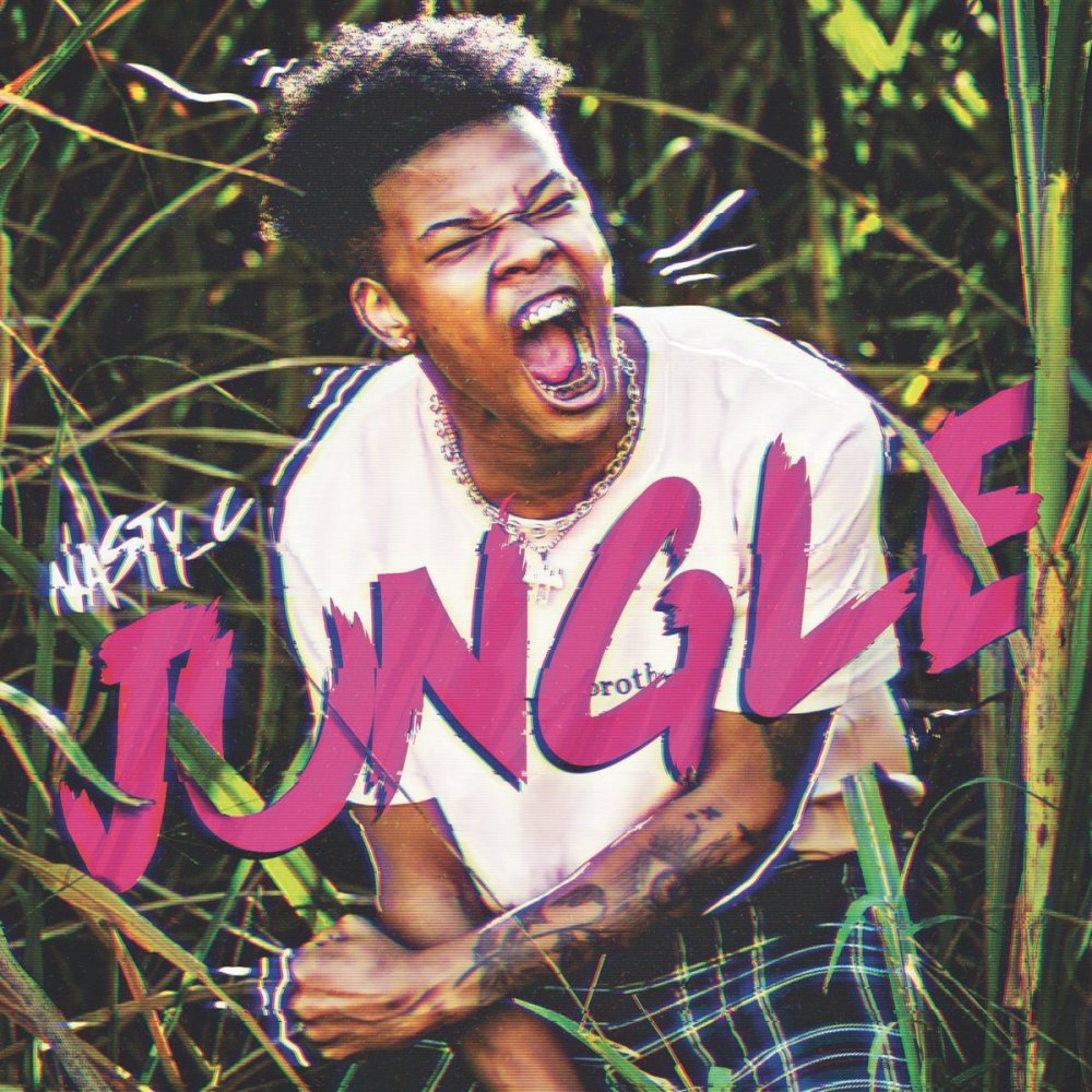 nasty c Listen To Nasty C's 2 New 'King' & 'Jungle' Joints DelYZQeWkAArIm8