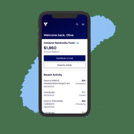 Charityvest platform