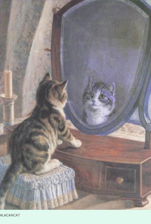 Lacan Cat