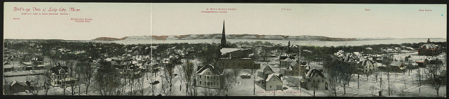 Bird's-eye view of Lake City, Minn. Creator(s): Phillips, F. H., copyright claimant Date Created/Published: c1907. Medium: 1 print (postcard) : color. Summary: Postcard shows residential view of Lake City, landmarks are indicated above buildings. Bluffs in background.
