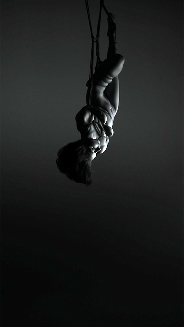 Robert Wilson, Video Portraits of Lady Gaga, Flying, (Making off) (2013)