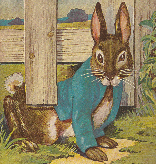 """Peter Rabbit illustrated for Beatrix Potter's """"The Tale of Peter Rabbit"""" (via mispocky/Flickr user)"""