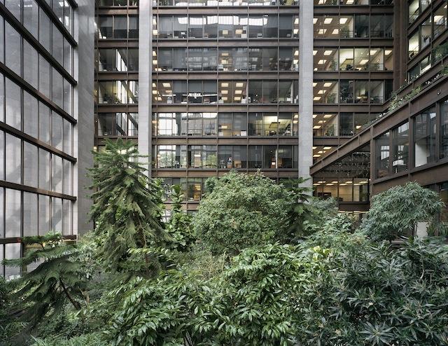 Ford Foundation Atrium New York, NY Photograph © David Leventi, 2013, courtesy The Cultural Landscape Foundation.