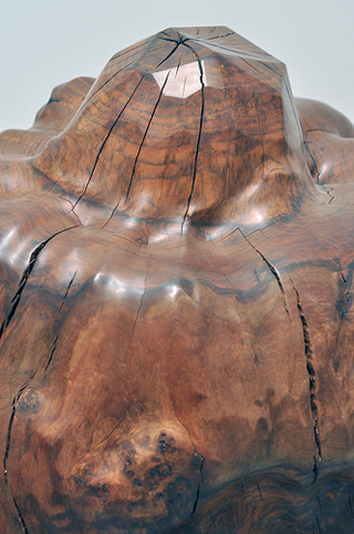 "Detail of Alma Allen, ""Untitled"" (2013), walnut on aluminum base"