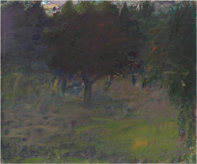 WK_Trees_Absorbing_Light_small_103332