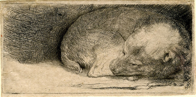 "Rembrandt Harmenszoon van Rijn, ""Sleeping Puppy"" (c. 1640), etching, 39 x 81 mm"