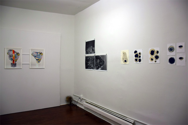 "A view of ""Photograph 2"" at Silver Project"