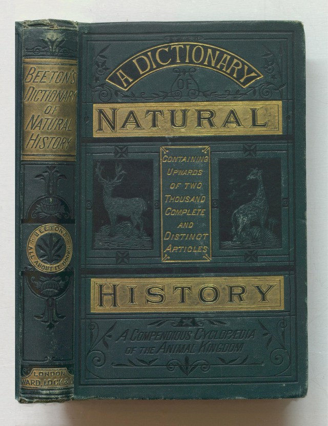 "Samuel Orchart Beeton, ""Beeton's Dictionary of Natural History"" (1884) (via Thomas Fisher Rare Book Library)"