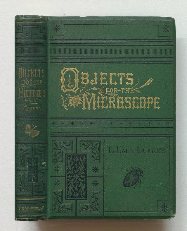 """Louisa Lane Clarke, """"Objects for the microscope; a popular description of the most instructive and beautiful subjects for exhibition or examination"""" (1889) (via Thomas Fisher Rare Book Library)"""