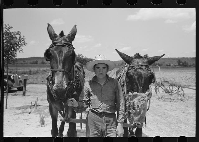 Males in Vian, Oklahoma, photograph by Russell Lee (June 1939) (via Photogrammar/Library of Congress)