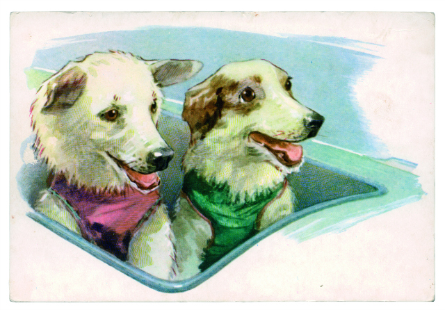 BELKA STRELKA CARTOON POSTCARD Postcard, USSR (1972) A postcard depicting Belka and Strelka in the 'cockpit' of their rocket. By the artist L. Aristov, from the collection titled 'Friends of Man'.  © FUEL Publishing