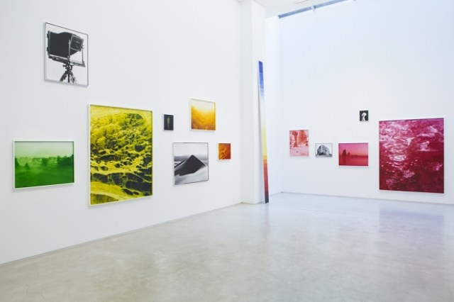 Installation view D Salon 94 Gallery. Courtesy Danziger Gallery and Salon 94 Gallery.