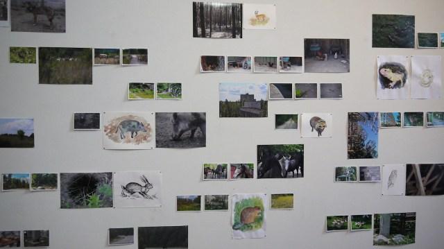 "Anna Jermolaewa, ""Safari Chernobyl"" (2014) installation view"
