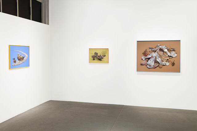 Benjamin Lord, installation view from The New Retail Mycology, on view at Monte Vista Projects, Los Angeles