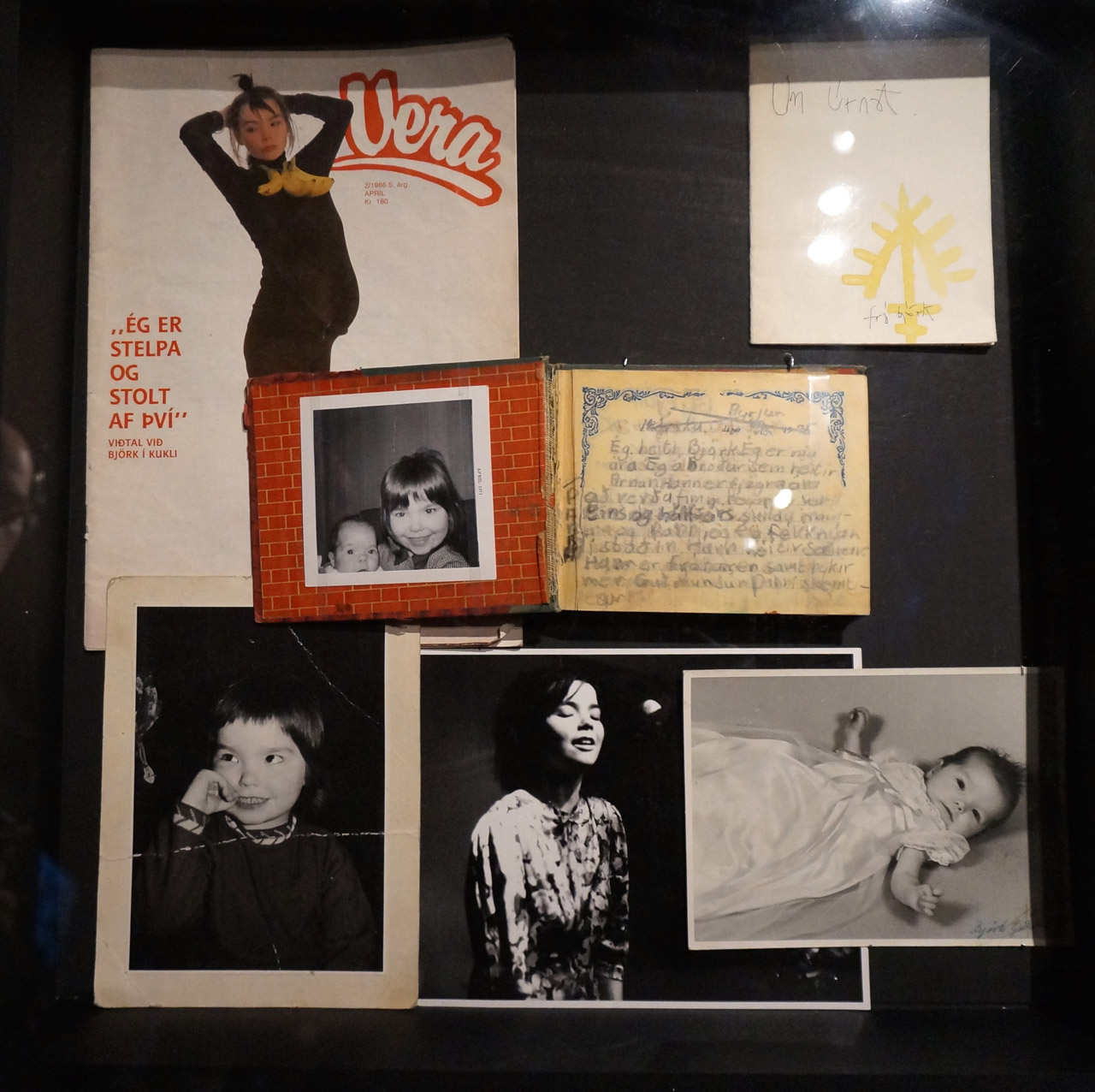 Björk ephemera and photos (photo by Jillian Steinhauer/Hyperallergic)