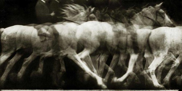 The movement of a running white horse (1886), photographed by Étienne-Jules Marey (via Wikimedia)