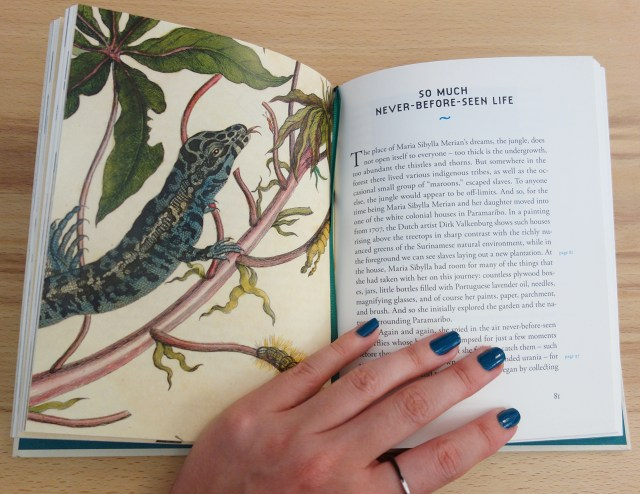 Pages from 'A Butterfly Journey' (photo of the book for Hyperallergic)