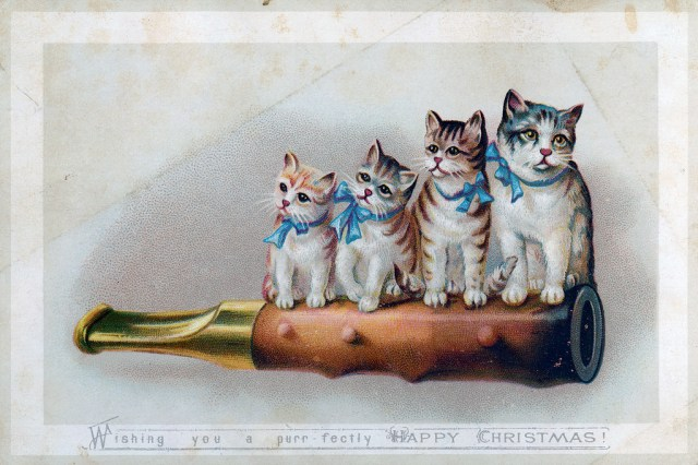 """Wishing you a purr-fectly happy Christmas"" (via Nova Scotia Archives/Flickr)"