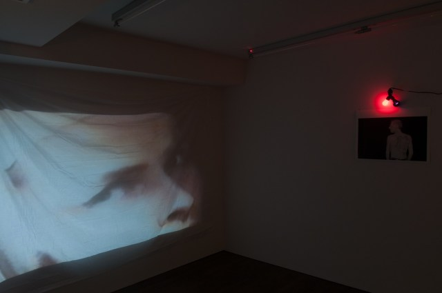 Hilton Als, One Man Show: Holly, Candy, Bobbie, and the Rest, installation view