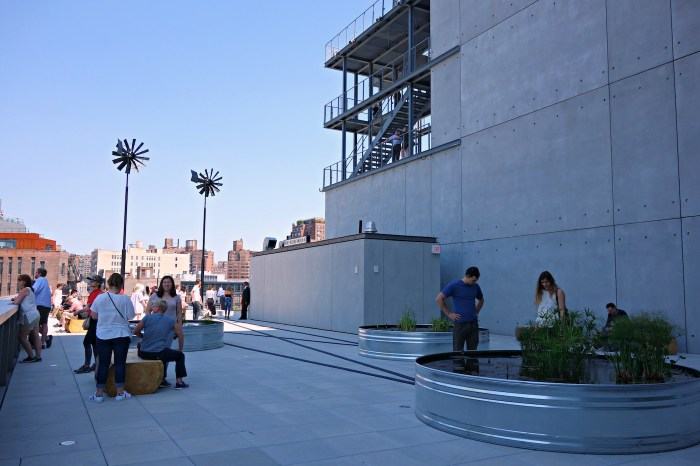 Installation view of 'Virginia Overton: Sculpture Gardens' at the Whitney Museum of American Art