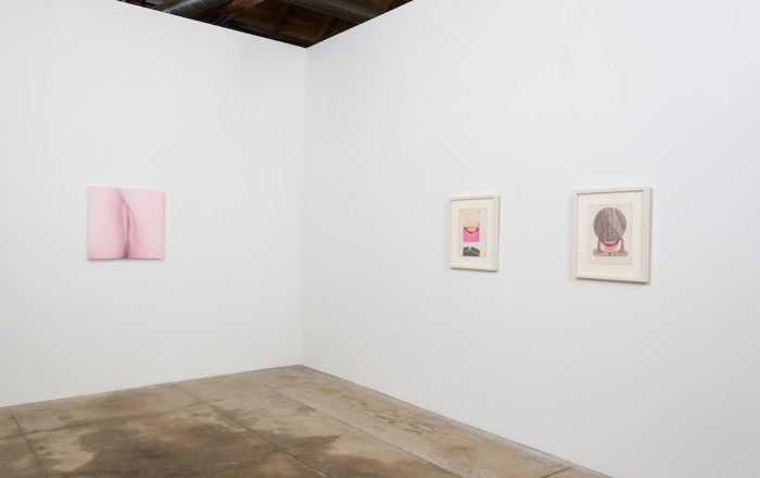 "Installation view of ""Betty Tompkins: Sex Works / WOMEN Words, Phrases, and Stories"" (courtesy of the artist and GAVLAK Los Angeles. Photo Credit: Jeff McLane)"