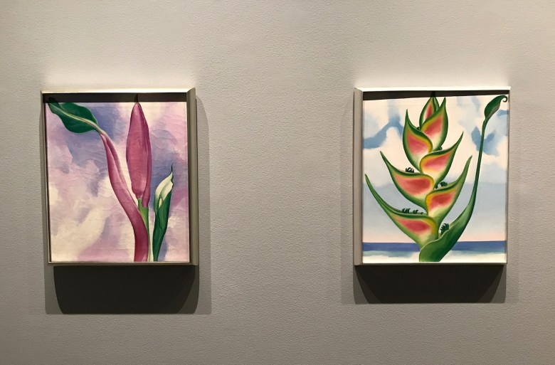 "Georgia O'Keeffe, ""Pink Ornamental Banana"" and ""Heliconia"" (both 1939)"